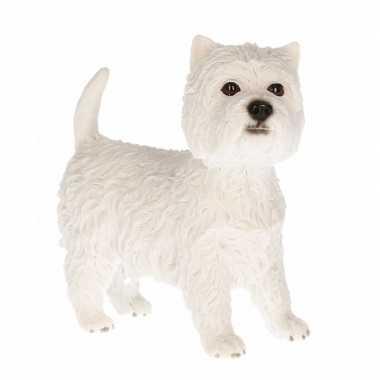 Beeldje West Highland Terrier kopen
