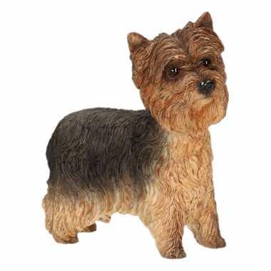 Beeldje Yorkshire Terrier kopen
