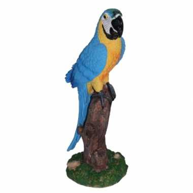 Blauw beeldje papegaai kopen