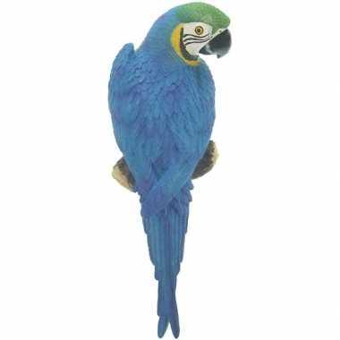Blauwe decoratie ara papegaaien dierenbeelden/tuinbeelden beeldje kop