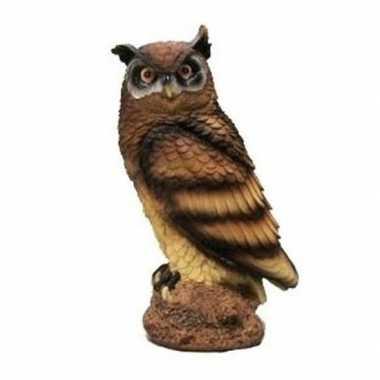 Bruine oehoe uil beeldje kopen