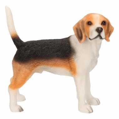 Decoratie beeld beagle beeldje kopen