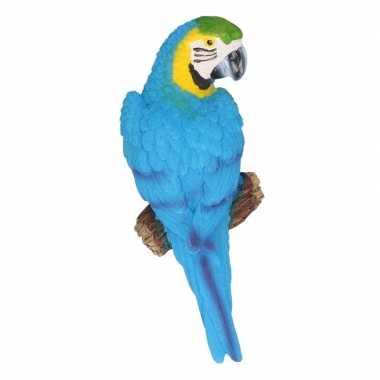 Decoratie beeld blauwe papegaai beeldje kopen