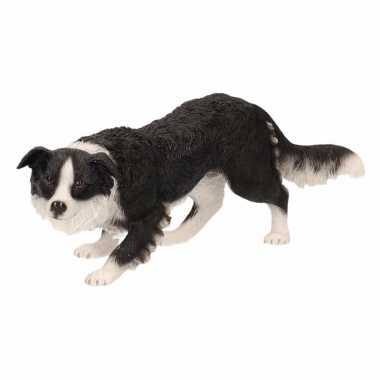 Decoratie beeld border collie hond beeldje kopen