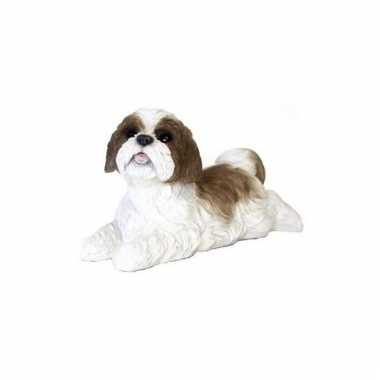 Decoratie beeld bruine boomer hond beeldje kopen