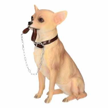 Decoratie beeld chihuahua hond beeldje kopen