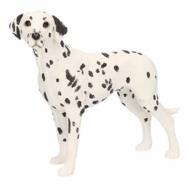 Decoratie beeld dalmatier hond beeldje kopen