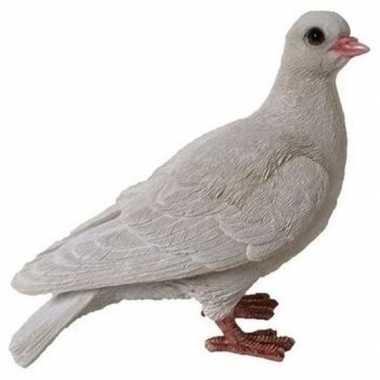 Decoratie beeld duif wit beeldje kopen