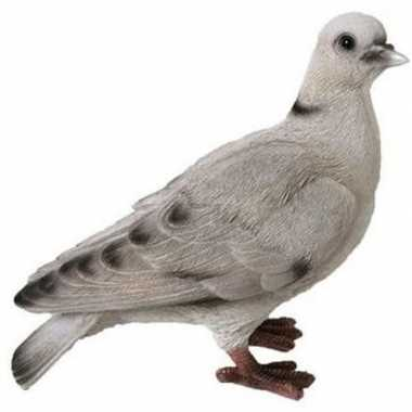 Decoratie beeld duif wit/grijs beeldje kopen