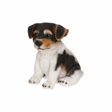 Decoratie beeld jack russel puppy honden zwart/wit beeldje kopen