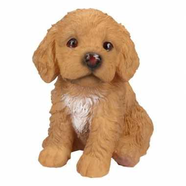 Decoratie beeld labradoodle puppy honden bruin beeldje kopen