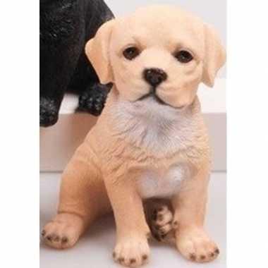 Decoratie beeld labrador puppy honden beige beeldje kopen