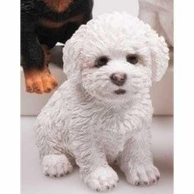 Decoratie beeld maltezer leeuwtje puppy honden wit beeldje kopen