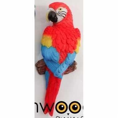 Decoratie beeld rode papegaai beeldje kopen