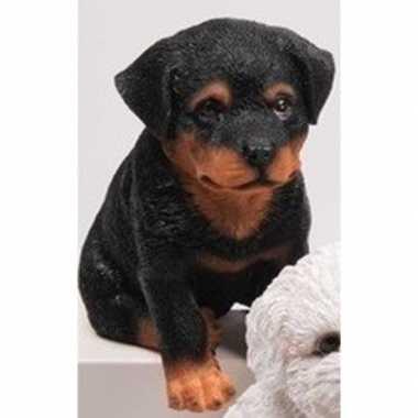 Decoratie beeld rottweiler puppy honden zwart beeldje kopen