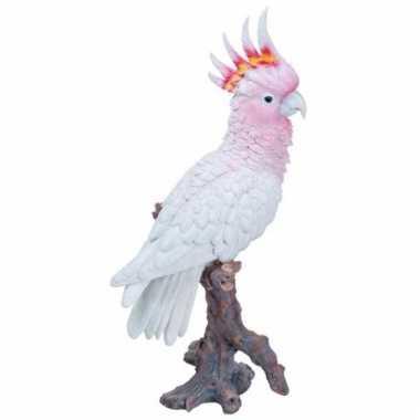 Decoratie beeld roze kaketoe beeldje kopen