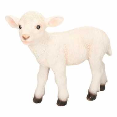 Decoratie beeld schaap/lam wit beeldje kopen