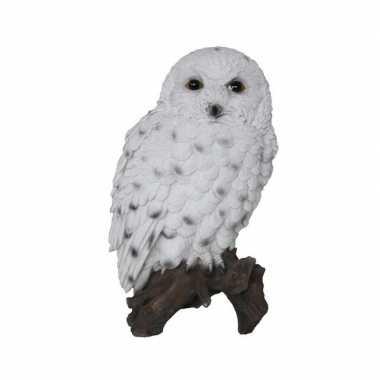 Decoratie beeld sneeuwuil stam beeldje kopen