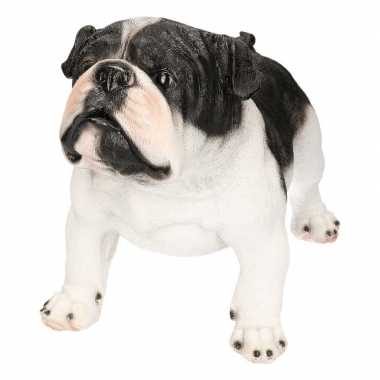 Decoratie beeld staande engelse bulldog honden zwart/wit beeldje kope