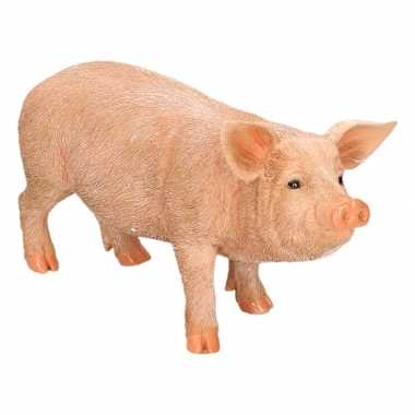 Decoratie beeld varkens biggen beeldje kopen 10112469