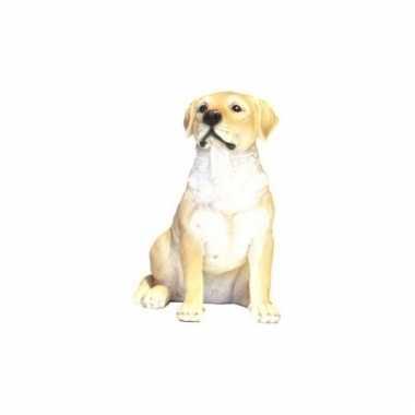 Decoratie beeld witte labrador hond beeldje kopen