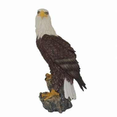 Decoratie beeld zeearend vogel stam beeldje kopen