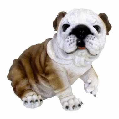 Decoratie beeld zitende bulldog hond beeldje kopen