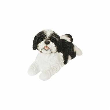 Decoratie beeld zwarte boomer hond beeldje kopen