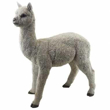 Decoratie dieren beelden alpaca/lama beeldje kopen