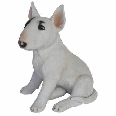 Decoratie dieren honden beeldjes bull terrier kopen