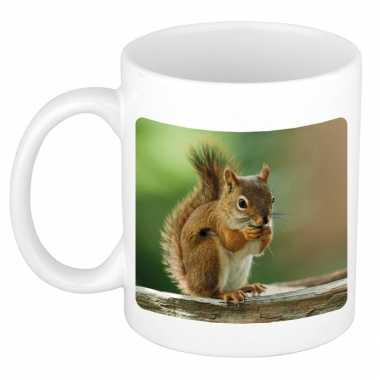 Dieren foto mok eekhoorn eekhoorns beker wit ml beeldje kopen