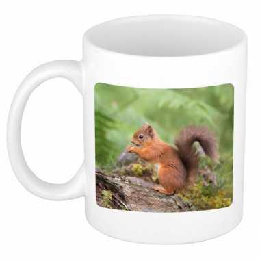 Dieren foto mok eekhoorntje eekhoorntjes beker wit ml beeldje kopen