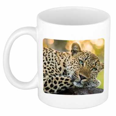 Dieren foto mok luipaard jaguars luipaarden beker wit ml beeldje kopen
