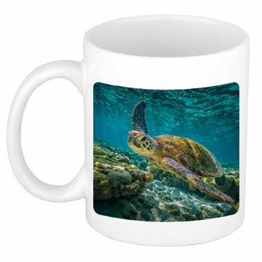 Dieren foto mok zee schildpad schildpadden beker wit ml beeldje kopen