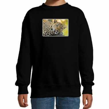 Dieren sweater / trui jaguars foto zwart kinderen beeldje kopen