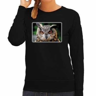 Dieren sweater / trui uilen foto zwart dames beeldje kopen