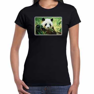 Dieren t shirt pandaberen foto zwart dames beeldje kopen
