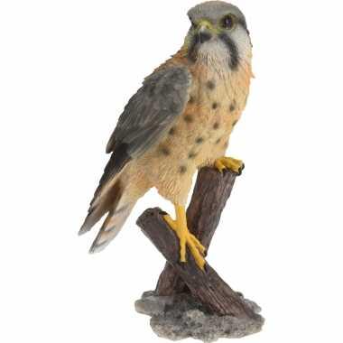 Dierenbeeld torenvalk vogel woondecoratie beeldje kopen