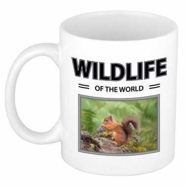 Eekhoorn mok dieren foto wildlife of the world beeldje kopen