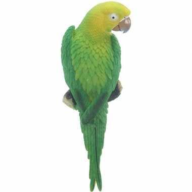 Groene decoratie ara papegaaien dierenbeelden/tuinbeelden beeldje kop