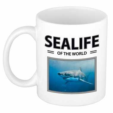 Haai mok dieren foto sealife of the world beeldje kopen
