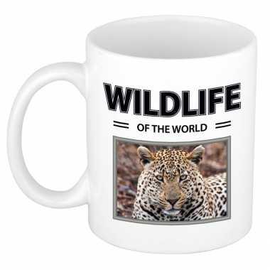 Jaguar mok dieren foto wildlife of the world beeldje kopen