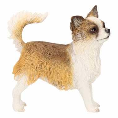 Kleine beeldje Chihuahua kopen