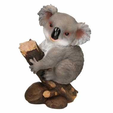 Koala dieren beeld woondecoratie beeldje kopen