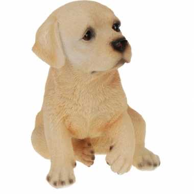 Labrador hond beeldje kopen