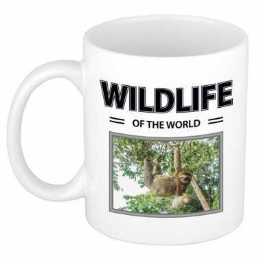 Luiaard mok dieren foto wildlife of the world beeldje kopen