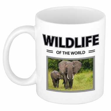 Olifant mok dieren foto wildlife of the world beeldje kopen