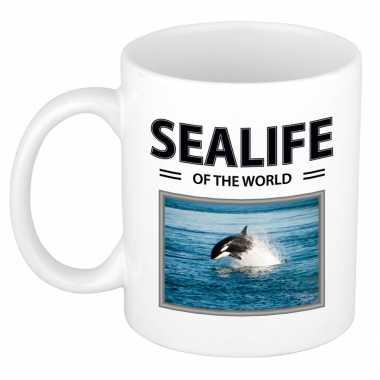Orka mok beker dieren foto sealife of the world beeldje kopen