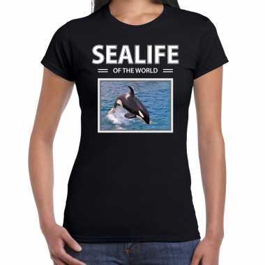 Orkas t shirt dieren foto sealife of the world zwart dames beeldje kopen