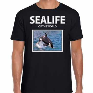 Orkas t shirt dieren foto sealife of the world zwart heren beeldje kopen